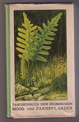 Taschenbuch der heimischen Moos - und Farnpflanzen
