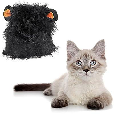 Beetest-Lion Mane Pet Wig for Cat Dog Pets Costume Halloween Christmas Dress up Black