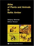 Atlas of Plants and Animals in Baltic Amber - Wolfgang Weitschat, Wilfried Wichard