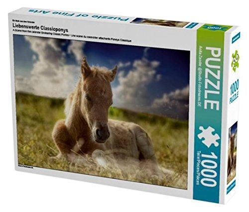 Anita Zander 1000 Teile Puzzle quer Motiv aus dem Kalender Liebenswerte Classicponys