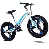 AI-QX Vélo Enfant pour Garcons et Filles de 5-7 Ans  Bicyclette Enfant 16-20 Pouces Cruiser avec Freins ,Blue,20''