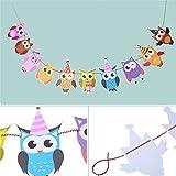 Hengsong Bunte Eule Geburtstag Party Dekoration DIY Banner Girlande Babyzimmer Kinderzimmer Dekor