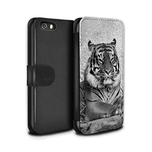 STUFF4 PU-Leder Hülle/Case/Tasche/Cover für Apple iPhone SE / Elefant Muster / Zoo-Tiere Kollektion Tiger