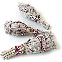 Weißer Salbei, 3 Bündel ~11cm, aus Kalifornien, Räucherware, white sage, smudge sticks preisvergleich bei billige-tabletten.eu