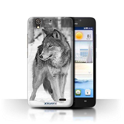 Stuff4® Hülle/Hülle für Huawei Ascend G630 / Wolf Muster/Zoo-Tiere Kollektion