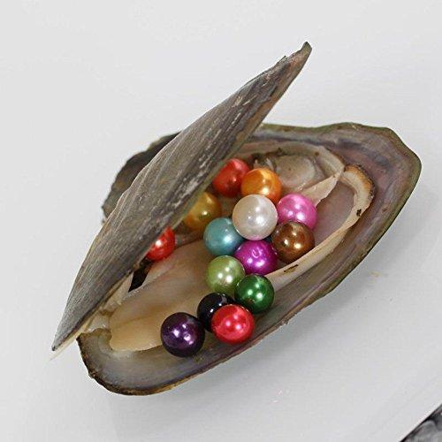 len Love Wish Pearl Rund 10Shining sinnvolle Farbe, Valentines Mutter Geburtstag Jahrestag Geschenke Perle Party, 1Oyster mit 10Perlen in (7–8mm) (Valentine Party-spiele Für Erwachsene)