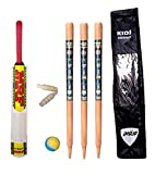 Sunshine Cricket Set for Boys, Wooden Cricket Kit with Carry Bag