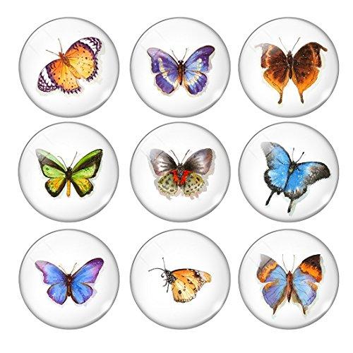 eten Verschiedene Schmetterlings Glasmagneten Für Kühlschrank 5Pcs/Set (Verkaufen Sie Für 1 Dollar)