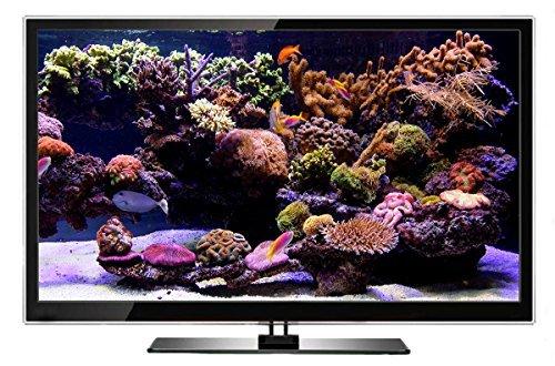 Aquarium DVD | TROPISCHES RIFF mit 4K ULTRA HD Download mit Natürlichen Geräuschen und Entspannender Musik - 3