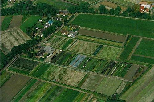 MF Matthias Friedel - Luftbildfotografie Luftbild von Schwalbenstraße in Rellingen (Pinneberg), aufgenommen am 09.09.02 um 15:32 Uhr, Bildnummer: 2208-05, Auflösung: 3000x2000px = 6MP - Fotoabzug 50x75cm
