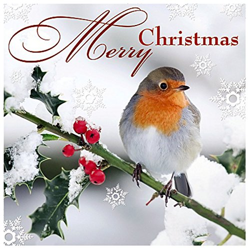 Me To You Up Close 3d Christmas Greeting Card Bird On Branch