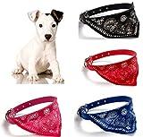 OHA-PET Hundehalstuch mit Halsband - auch für die Katze SCHWARZ