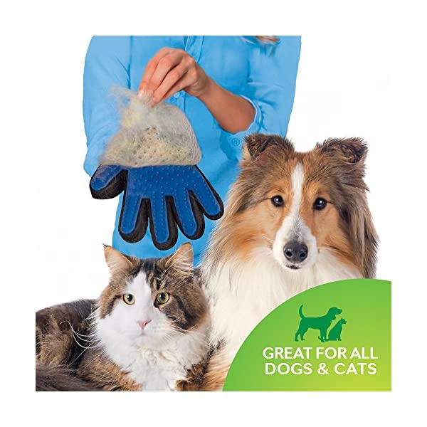 Allstar Innovations True Touch Five Finger Deshedding Glove- Premium Version, Great for Cats & Dogs- Includes 1 Authentic True Touch Glove 1 Lint Roller- As Seen on TV 4