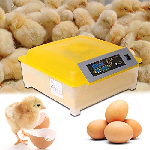 Iglobalbuy Digital 48 Ei Inkubator Hatcher Temperaturregelung Auto Drehen Huhn Geflügel Ente Egg Hatch