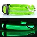 XWBO LED Hundehalsband Hund Katzen USB Aufladbar Halsband Leuchthalsband Nacht Sicherheit Wasserdicht Blinkende Hundeband