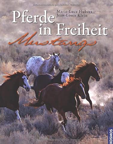 Pferde in Freiheit: Mustangs