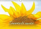 Sonnenblumen - die Blumen der Lebensfreude (Wandkalender 2018 DIN A4 quer): Bezaubernde Naturaufnahmen - Sonnenblumenfel