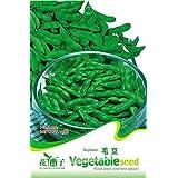 3 paquetes de 60 semillas de Edamame, soja Semilla de Soja C032 vegetal verde