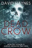 Dead Crow by David Haynes