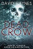 Dead Crow...