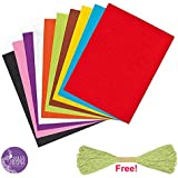 Asian Hobby Crafts Coloured Felt Pack (10 Pieces)