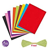 #5: Asian Hobby Crafts Coloured Felt Pack (10 Pieces)