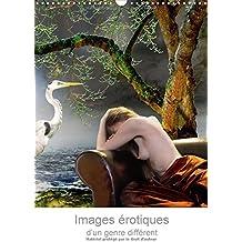 Images Erotiques D'un Genre Different 2017: Reveries Poetiques Et Erotiques De Femmes