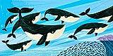 iota illustration Poster, Motiv Whale Swim von Oliver Lake, mit Autogramm