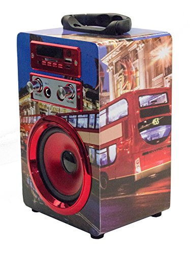 Bluetooth Lautsprecher mit Mikrofon / Karaoke Radio USB SD AUX MP3 Player Box Musikbox mit Mikrofon (Rot)