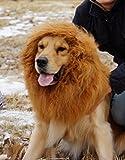 Perruque Lion Cheveux Crinière pour Grand Chien Chat Domestique Déguisement de Soirée Halloween Noël Brun Clair