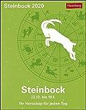 Steinbock 2020 11x14cm