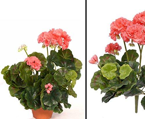 Geranien, Kunstblume rose, Höhe ca. 30cm, ohne Topf – Kunstpflanze Kunstbaum künstliche Bäume Kunstbäume Gummibaum Kunstoffpflanzen Dekopflanzen Textilpflanzen Textilbäume