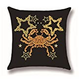 Hengjiang Housses de coussin Marron astrologie Tarot douze constellations Peinture 120g Coton épais en lin double face 45x 45cm Couvre-lit Taies d'oreiller pour maison Canapé lit décoratifs
