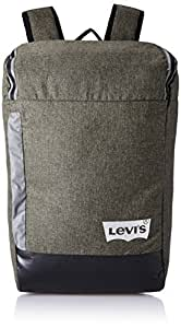 Levi's Fabric 32 cms Grey Backpack (38004-0079)