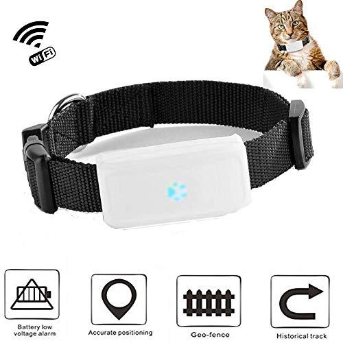 GPS tracker chat chien TKSTAR Mini traceurs GPS anti-perte suivi en temps réel pour petit chat chien enfants...