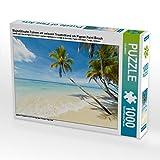Pigeon Point Beach - Puzzle da 1000 pezzi, soggetto: palme maestose sulla spiaggia bianca