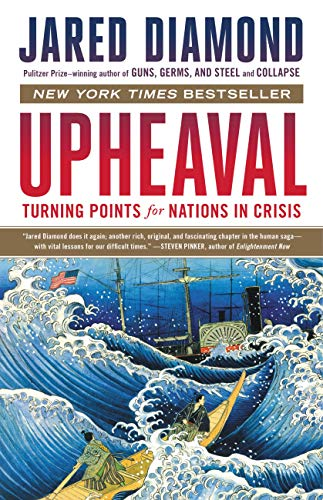 National Union (Upheaval: Turning Points for Nations in Crisis (English Edition))