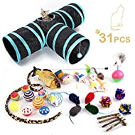 Cat toy, 25pcs Kitten Toys Value Pack- 3 Way Tunnel, Catnip fish, Interactive Feather Teaser, Fluffy Mouse, Tumble Cage Mice, Crinkle Balls - Super Fun for Puppy, Kitty, Rabbits and Dogs