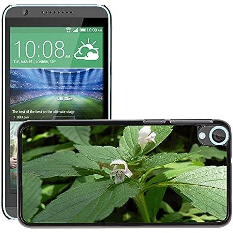 Etui Housse Coque de Protection Cover Rigide pour // M00307290 Galé © opside flor follaje de plantas // HTC Desire