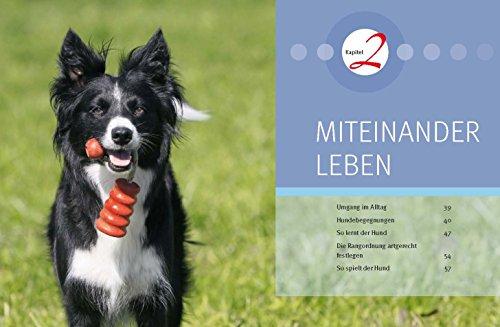 Hundeschule für jeden Tag: Erziehung die dem Hund Spaß macht - 4