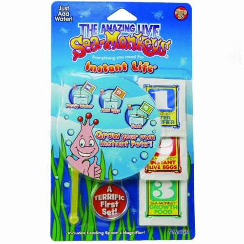 sea-monkeys-instant-life