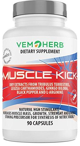MUSCLE KICK - Pflanzliche Steroide Komplex mit beta-Ecdysteron, Furostanol Saponin Steroide, L-Arginin & Ginkgo biloba - HGH Wachstumshormon - Muskelaufbau, Regeneration & Libido