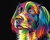 Senza telaio, Dipingi con i numeri della pittura a olio fai da te Colourful cane Tela stampa della parete di arte della decorazione della casa da Rihe