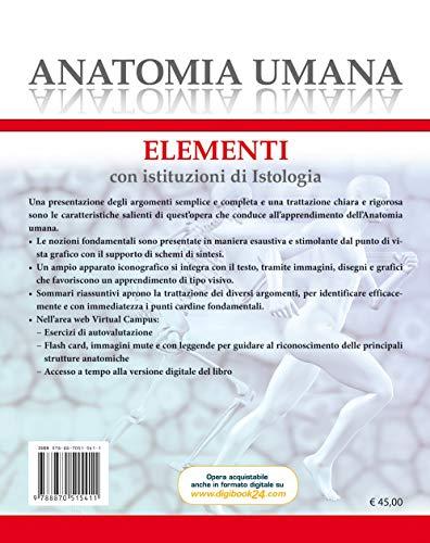Zoom IMG-1 anatomia umana elementi con istituzioni