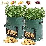 LOBKIN Set di 2 Vasi per Piante, per Patate e Patate, Carote & Pomodori, Sacchi per Piante Potato Grow Bag 7 Gallon Grow Borse Polietilene Impermeabili con Patta 35*45cm
