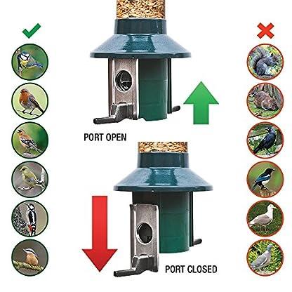 Squirrel Proof Wild Bird Feeder - Roamwild PestOff (Mixed Seed / Sunflower Heart Feeder) 6