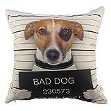 HOSL 1 Pcs Cotton Linen Sofa Home Decor - Best Reviews Guide