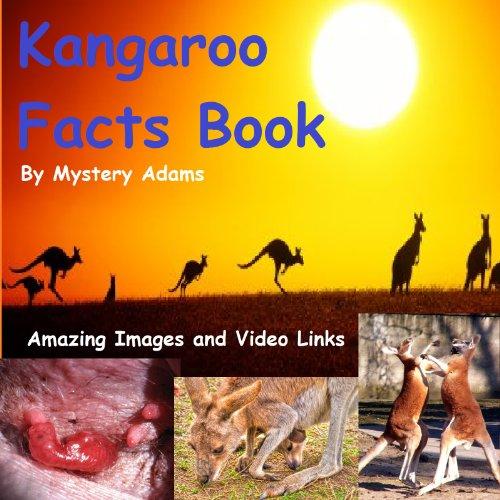 Kangaroos Facts Book for Kids - Amazing Fun Facts About Kangaroos (English ()