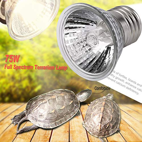 IIfreesia UVB 25W / 50W / 75W Bombilla compacta Spectrum Completa Terrario de la lámpara Espectro Ideal para Tortugas Reptiles Anfibios (Plateado)