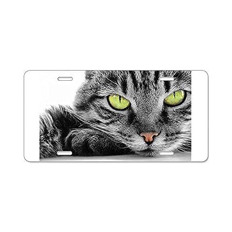 CafePress grey cat green eyes Aluminum License Plate - Standard Multi-color